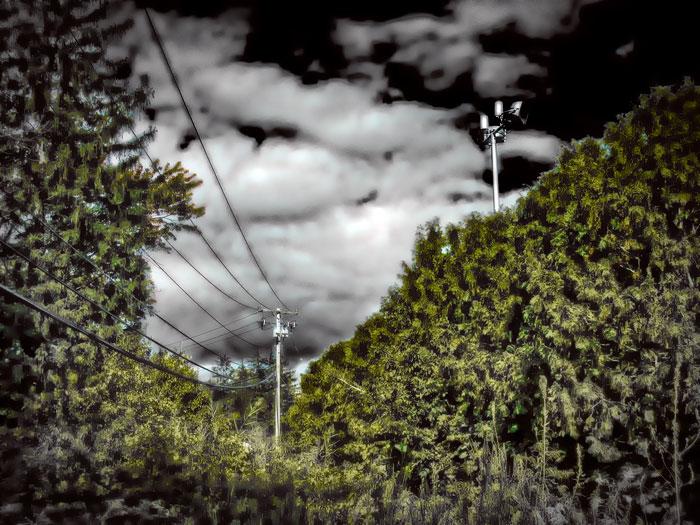 Terrain-Vague,-Latham